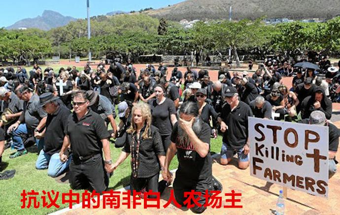 """带着""""砸场子""""的任务来的?韩国代表团奥运村收起""""反日""""横幅,又挂起猛虎图,疑似内涵领土争端"""