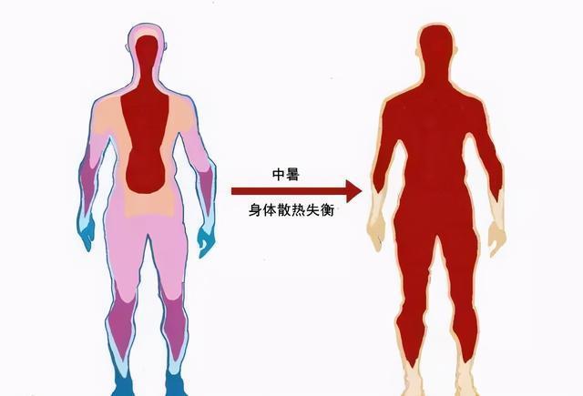 """""""北溪-2""""即将完工,关键时刻默克尔突然变脸,向乌克兰许下承诺"""