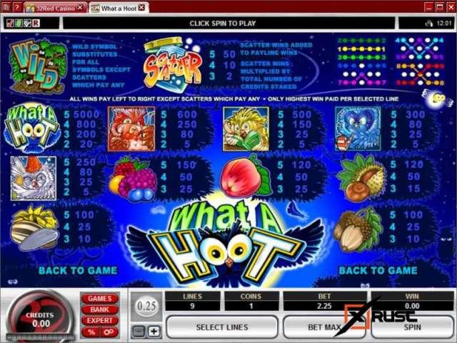What a Hoot в казино Эльдорадо