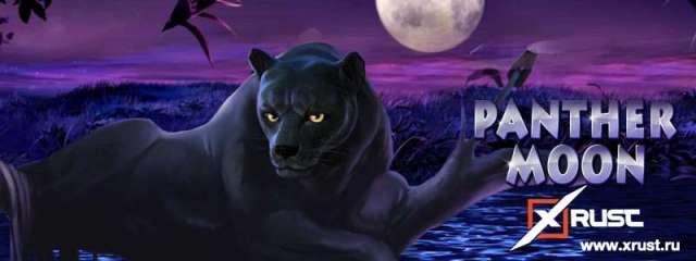 Казино Эльдорадо и новый слот Panther Moon