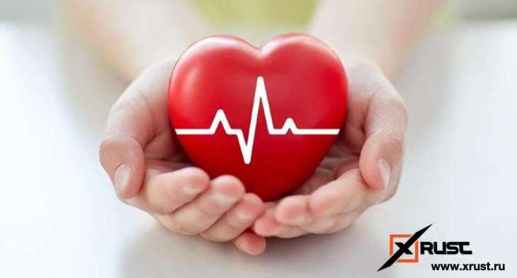 Домашний тест : как работает ваше сердце
