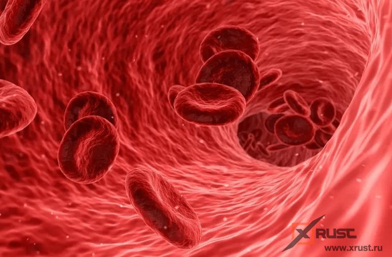 С какой группой крови больше долгожителей?