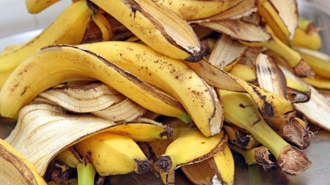 Χρήσεις Μπανανόφλουδας