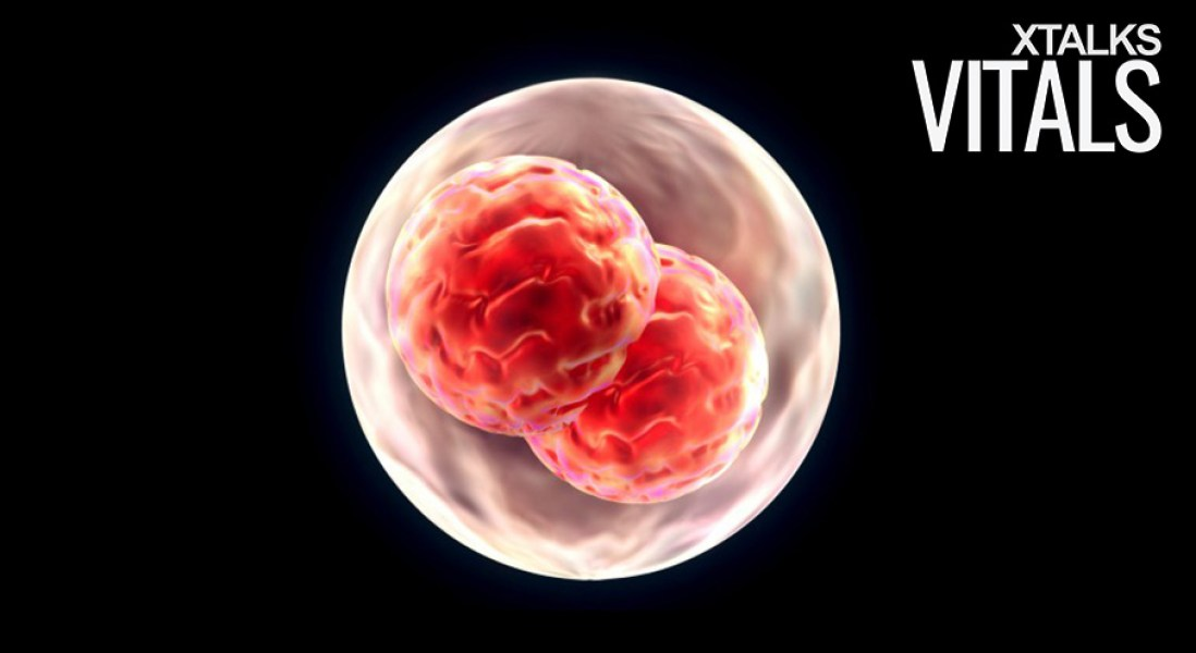 Gene Editing Approved For Research On Human Embryos In UK