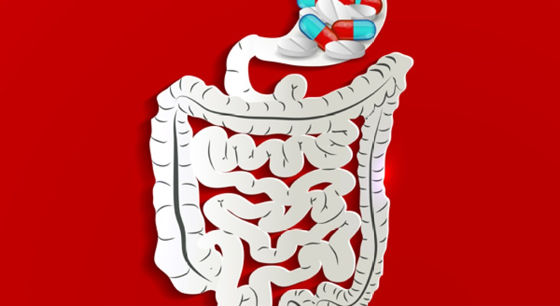 Acidophilic Microbe Could Be Used To Help Drugs Pass Through Stomach