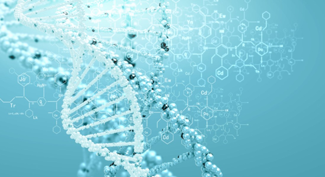 DNA's Ultraviolet Light Protection Mechanism Uncovered
