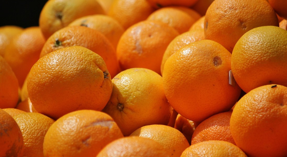 USDA to Fund Research to Combat Citrus Greening Disease
