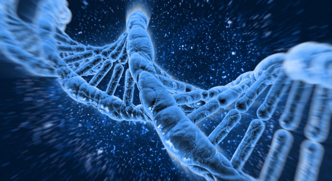New CRISPR Gene Editing Enzyme Removed Duchenne Muscular Dystrophy Mutations