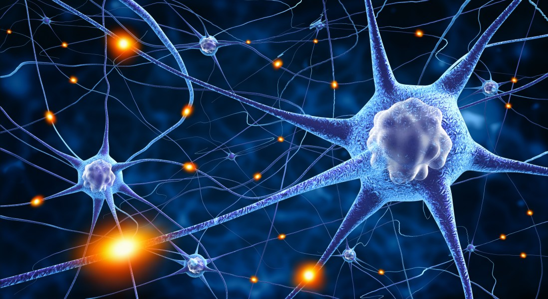 Clinical Trial will Test Statins as Multiple Sclerosis Treatment