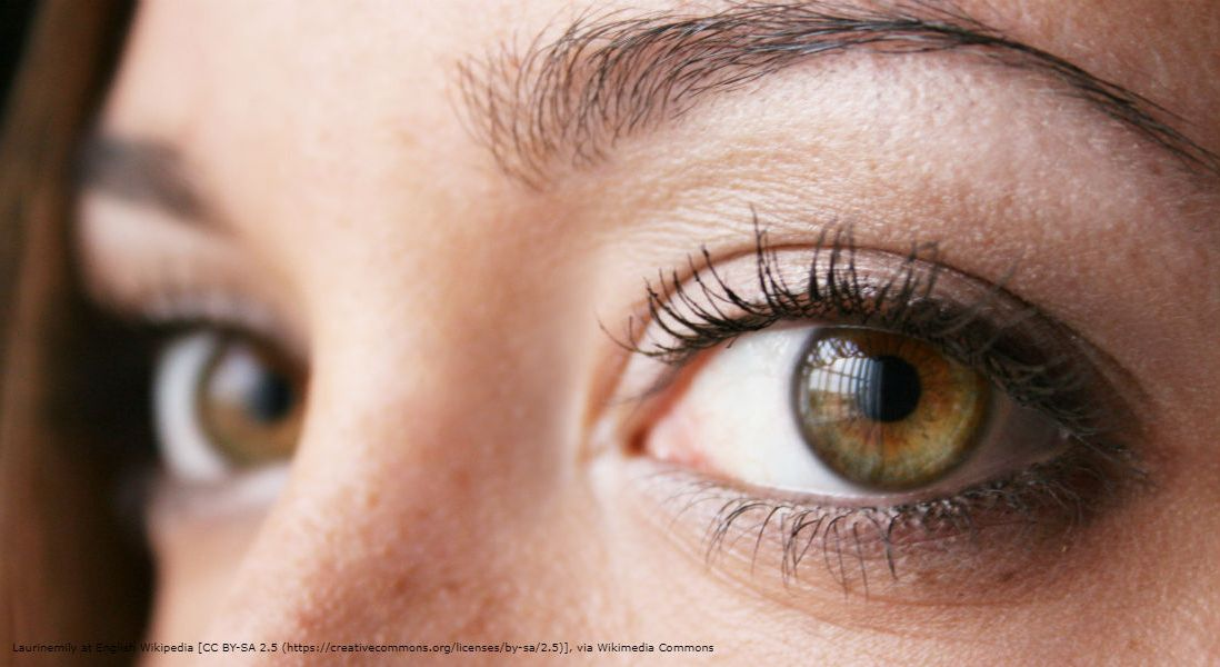The Dry Eye Debate: How Effective is Allergan's Restasis and Should We Be Paying for It?