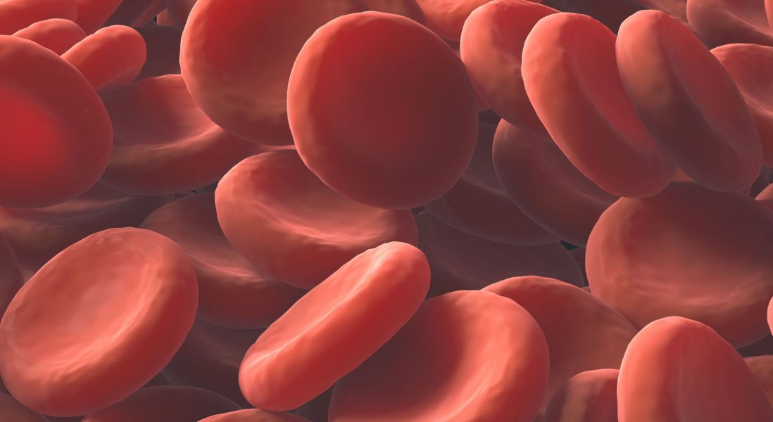 New Method Collects Circulating Tumor Cells from Blood Samples to be Used in Liquid Biopsy