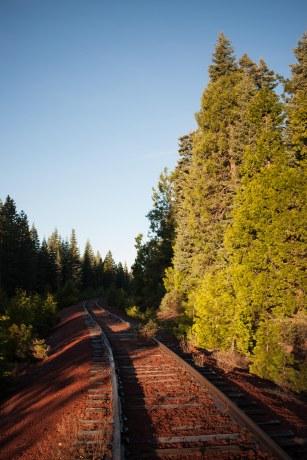 Yosemite-3156