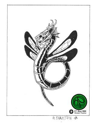 Dragonfly 1994 8x10 300dpi