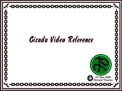Cicada Video Reference