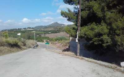 L'Ajuntament de Xàtiva intensifica el desbrossament, la neteja i la reparació de camins