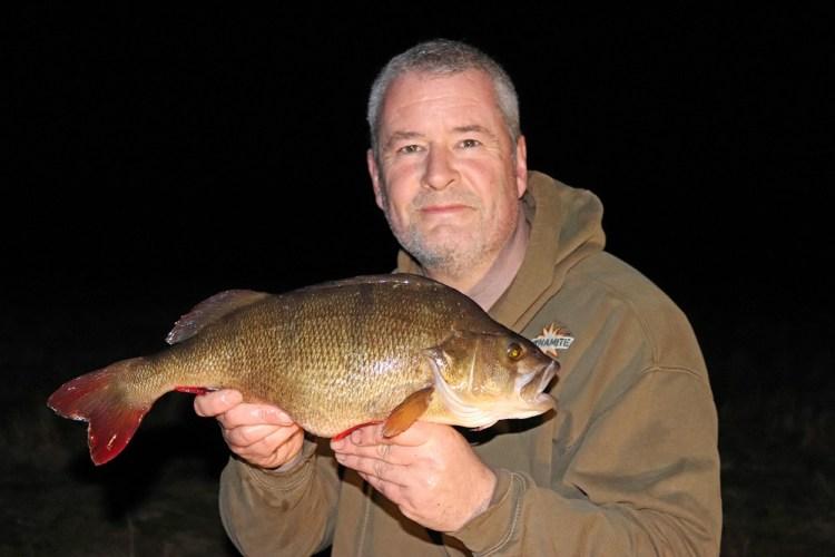tony gibson specimen perch fishing tips