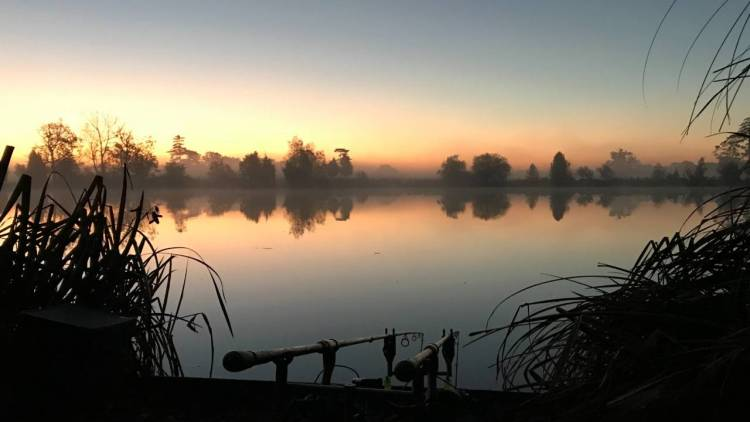 the avenue fishery at sunset