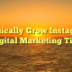 Organically Grow Instagram – Digital Marketing Tips