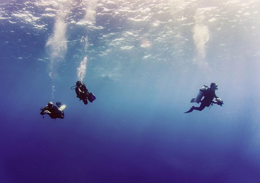 Scuba Diving Guide 2