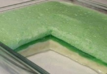 Creme de gelatina com leite condensado