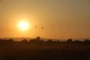 Vakantie_Zambia_140719_0445-77