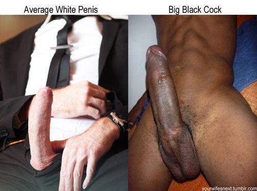 white dicks tumblr