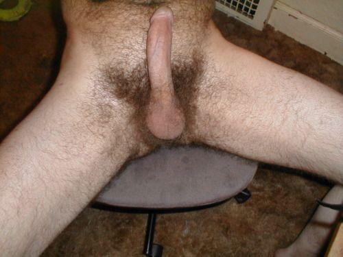 gay hairy cock tumblr