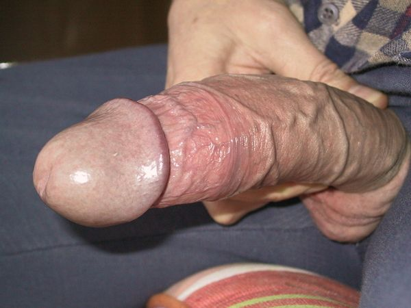 big veiny cocks tumblr