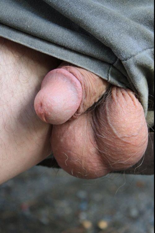 Cock Stuffing Tumblr