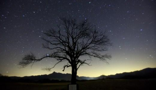 月9ドラマ「カインとアベル」オープニング(OP)、エンディング(ED)に出てくる樹木ロケ地(撮影場所)はどこ?野辺山高原 やまなしの木!
