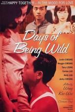 Days of Being Wild (1990) BluRay 480p & 720p Free HD Movie Download