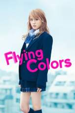 Flying Colors (2015) BluRay 480p & 720p Full Movie Download