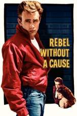 Rebel Without a Cause (1955) BluRay 480p & 720p Movie Download