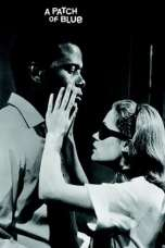 A Patch of Blue (1965) BluRay 480p & 720p Free HD Movie Download