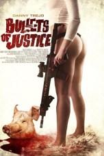 Bullets of Justice (2019) WEBRip 480p   720p   1080p Movie Download
