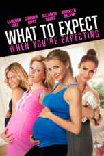 What to Expect When You're Expecting (2012) BluRay 480p | 720p | 1080p