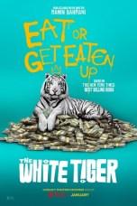 The White Tiger (2021) WEB-DL 480p, 720p & 1080p Movie Download