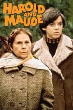 Harold and Maude (1971) BluRay 480p, 720p & 1080p Movie Download