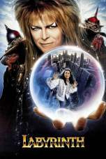 Labyrinth (1986) BluRay 480p, 720p & 1080p Movie Download