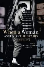 When a Woman Ascends the Stairs (1960) BluRay 480p, 720p & 1080p Mkvking - Mkvking.com