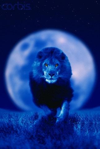 Супер Луна, Синя Луна, Пълно лунно затъмнение и пълнолуние в едно