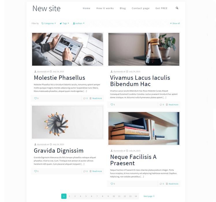 Detailed-WordPress-BeTheme-Review-21