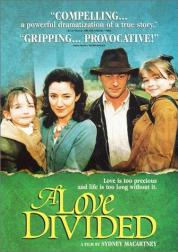 Love divided best irish movies to watch