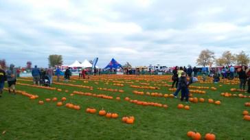 pumpkin give away event
