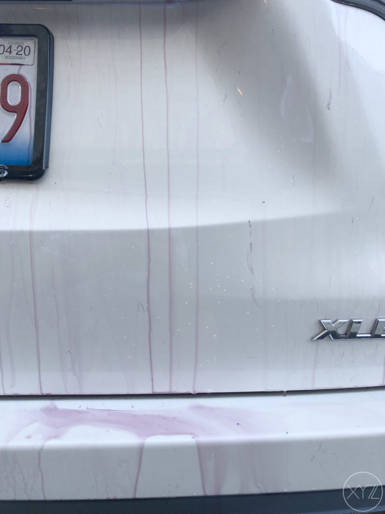 How To Remove Yellow Stains From White Car Paint : remove, yellow, stains, white, paint, Remove, Yellow, Spots, Paint, XYZProdigy