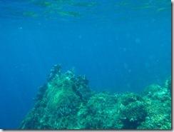 Underwater Orbs (4/6)