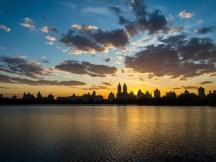 Central Park April 2015-6