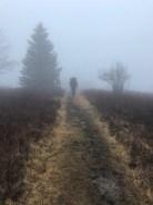 Ken hikes through the fog.