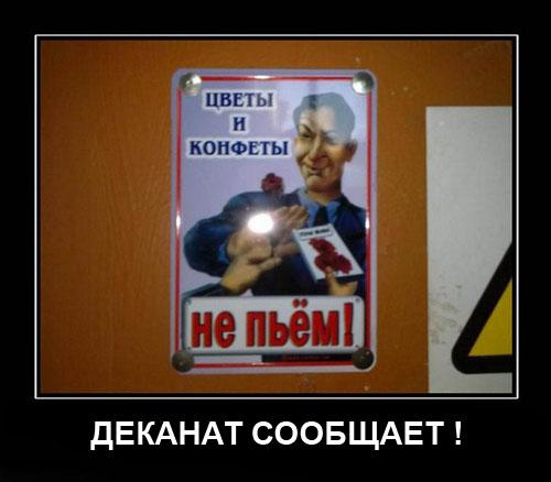 Смешные картинки про студентов11