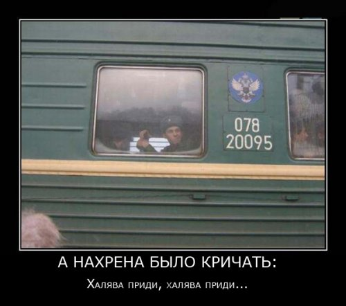Смешные картинки про студентов13